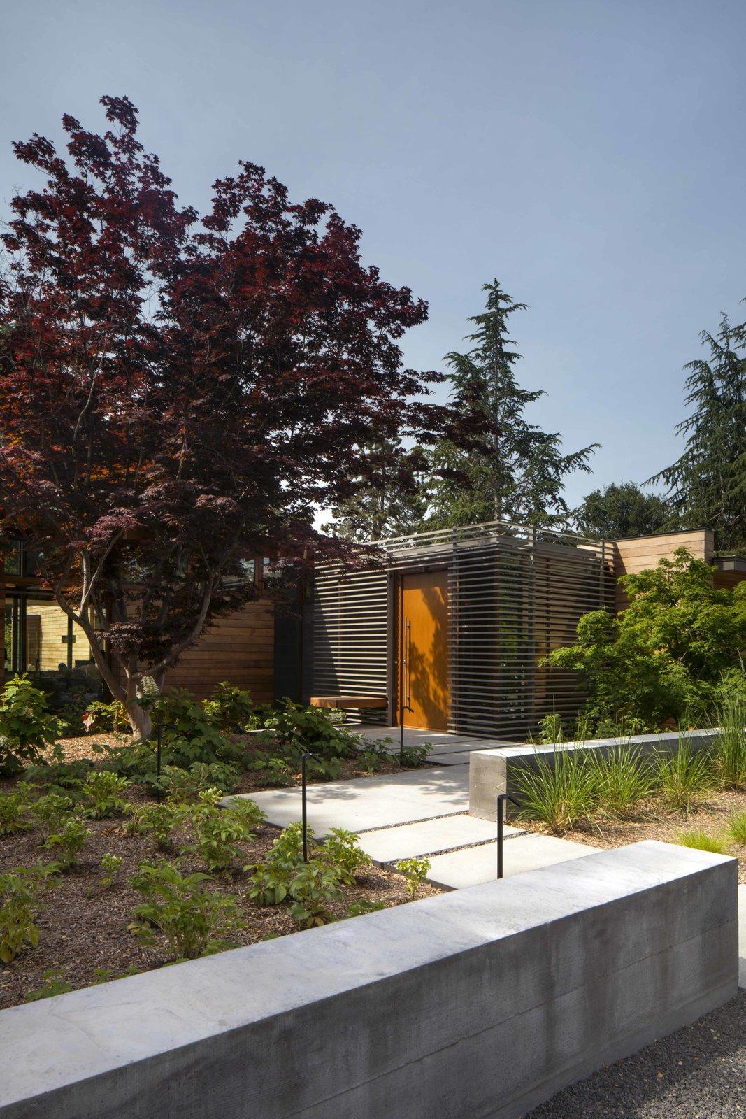 Los Altos Modern Residence by Matarozzi Pelsinger Builders