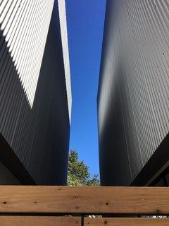 Houston Modernists