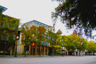 The Healdsburg Plaza has a charm all it's own.