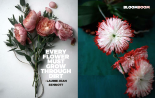 Left: Unknown, Right: from kvtes.tumblr.com, Right: From a beautiful site Sinjabloeme Flower Arrangements
