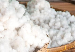 Our Bedding allows you to experience Egyptian long-staple cotton in its purest and most natural form; Source: WiseGeek