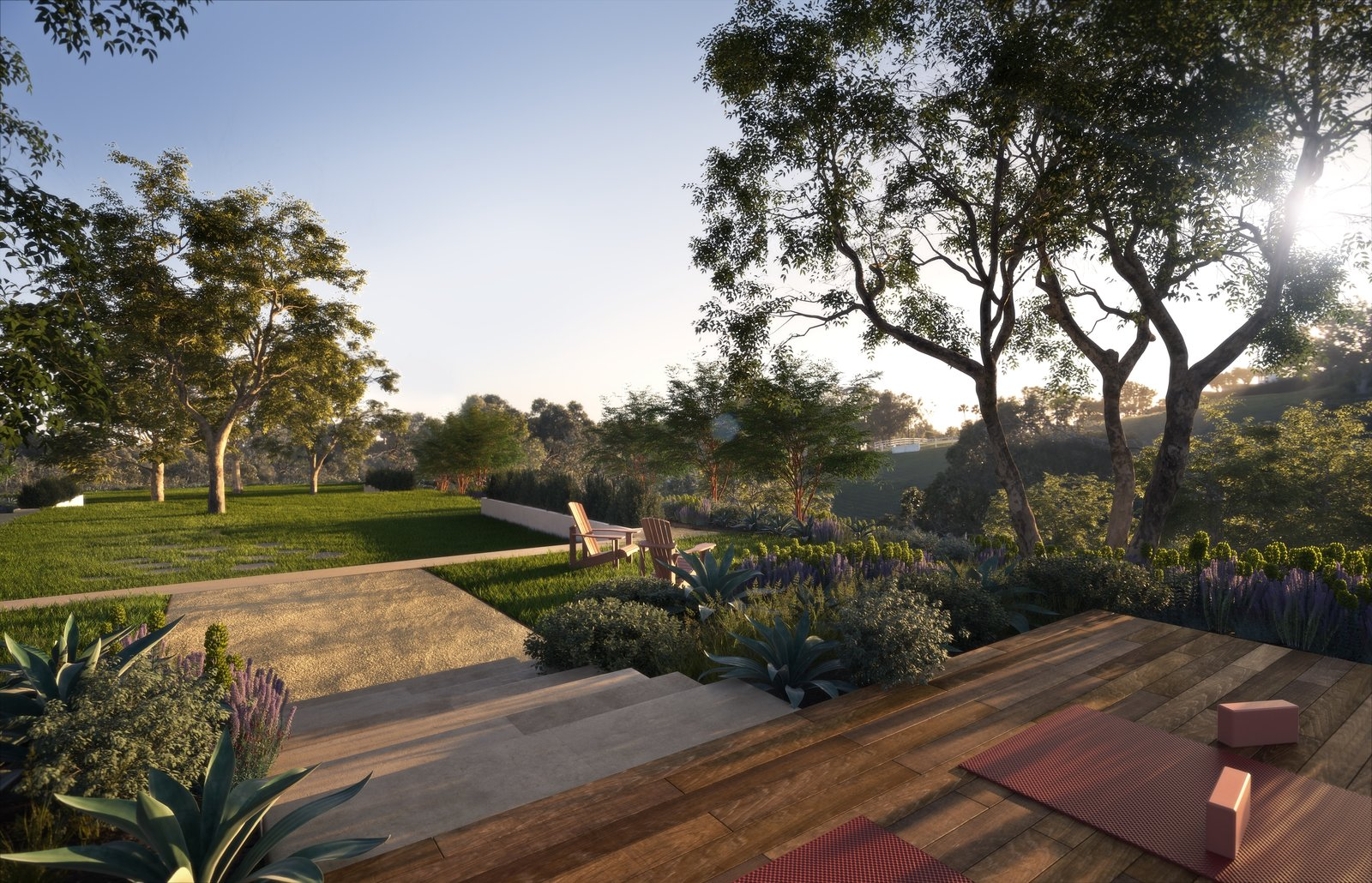 Photo 1 of 2 in Cavalleri opts for drought-friendly landscaping by notable designer Pamela Burton