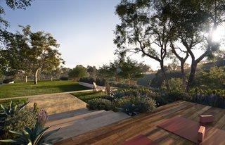 Cavalleri opts for drought-friendly landscaping by notable designer Pamela Burton