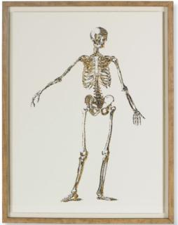 Gold skeleton