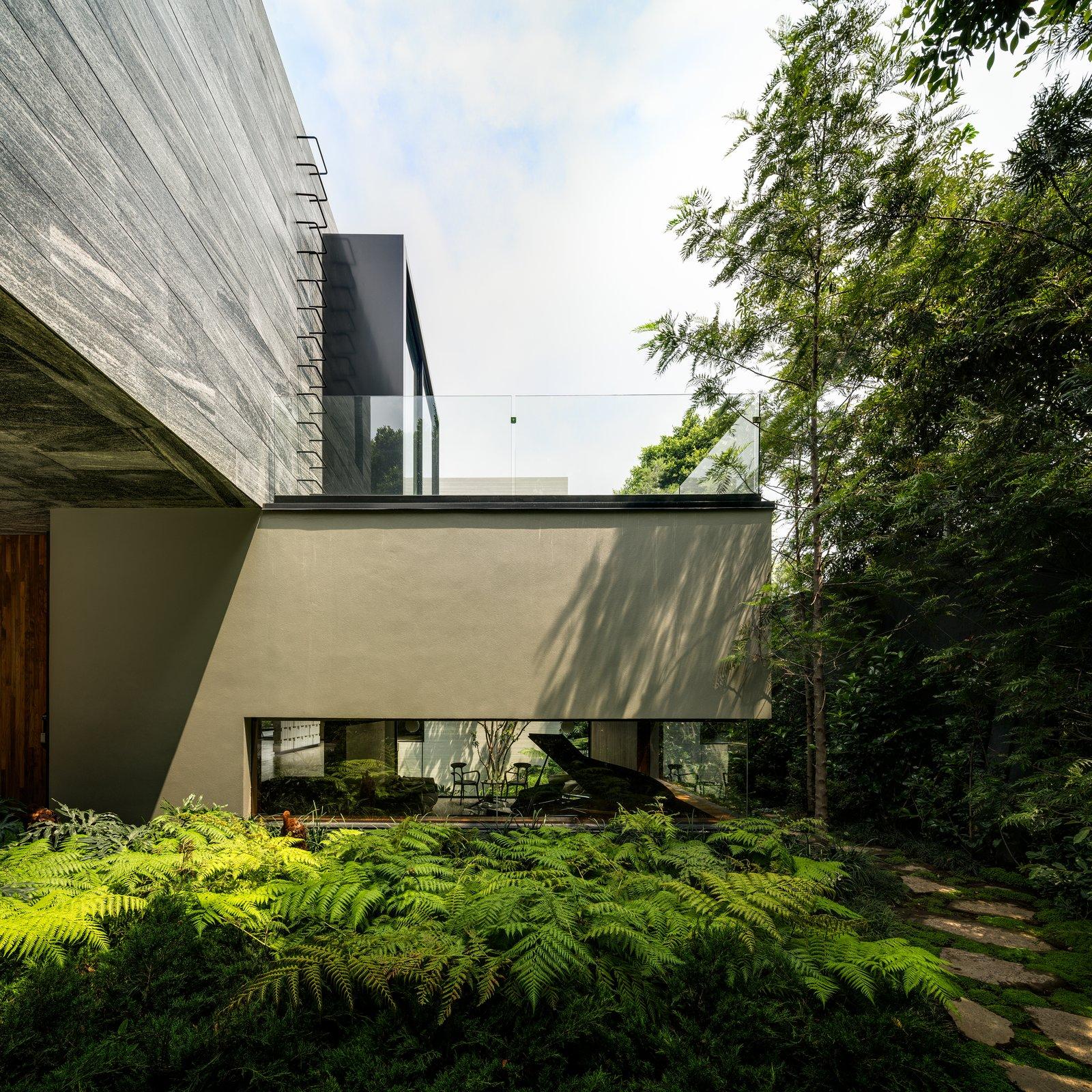 Outdoor, Side Yard, Gardens, and Walkways  Casa O Cuatro by Migdal Arquitectos
