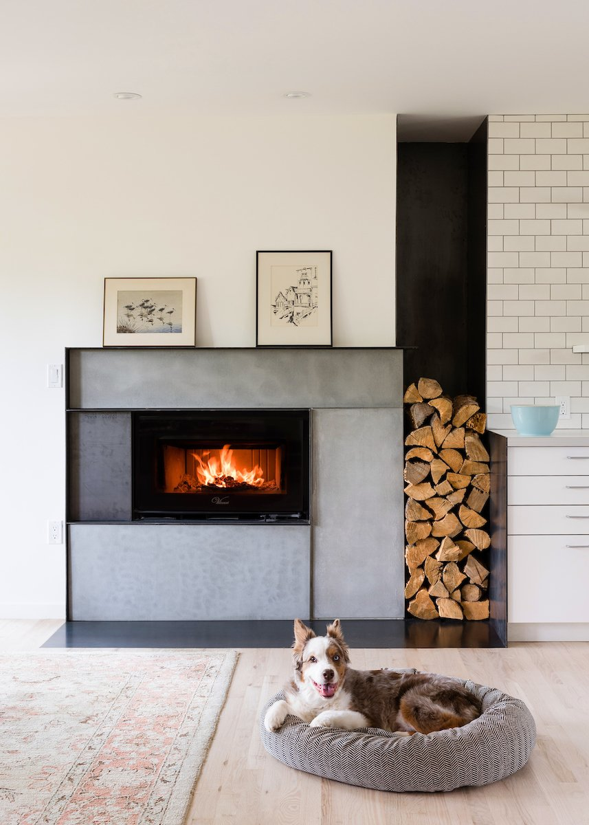 Zen Light home living room with dog bed