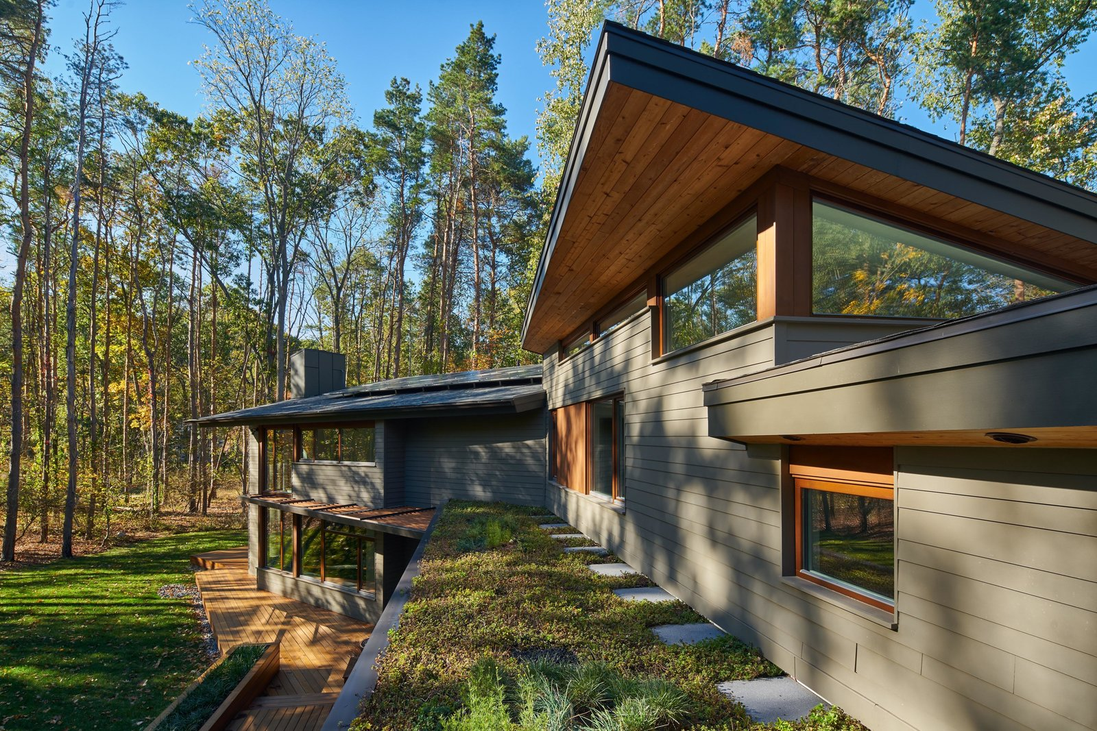 Exterior, House Building Type, Green Roof Material, Wood Siding Material, and Flat RoofLine  Deer Haven Residence by Mathison I Mathison Architects