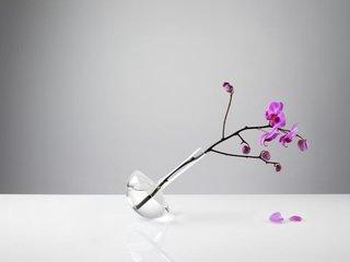 Gauge Vase