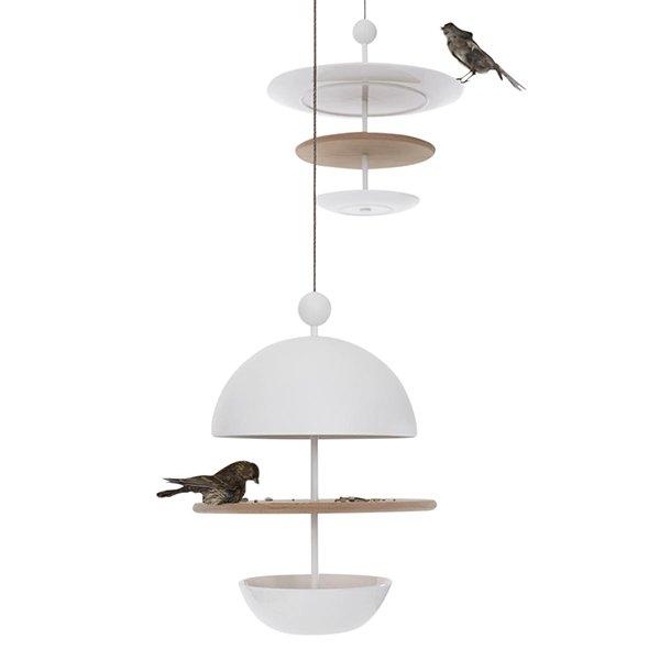 Dish of Desire Bird Feeder