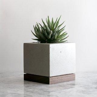 Concrete & Wood Planter