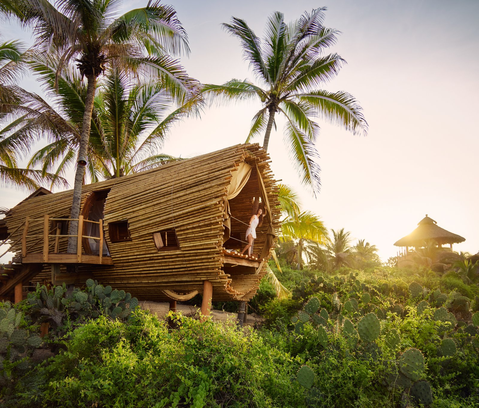 Exterior and Treehouse Building Type The Playa Viva tree house by ArtisTree  Photo 12 of 16 in Experience Tree-Top Living at One of These Sustainable Tree Houses