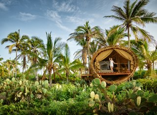 Experience Tree-Top Living at One of These Sustainable Tree Houses - Photo 12 of 15 - The Playa Viva tree house by ArtisTree