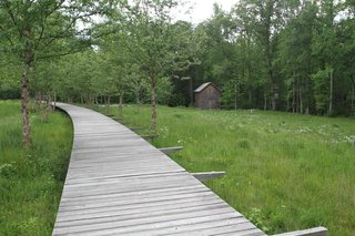 A wastewater area doubles as a nature trail along a raised boardwalk.