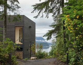 The Little House in Seabeck, Washington, by MW Works captures the essence of a cabin in the woods, despite its more generous size. It also won an award in 2017.