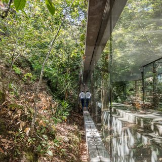 A Portuguese Glass House Uses Surrounding Foliage as a Privacy Screen - Photo 10 of 15 - Light enters the home from all sides, even those which are closest to the hill.