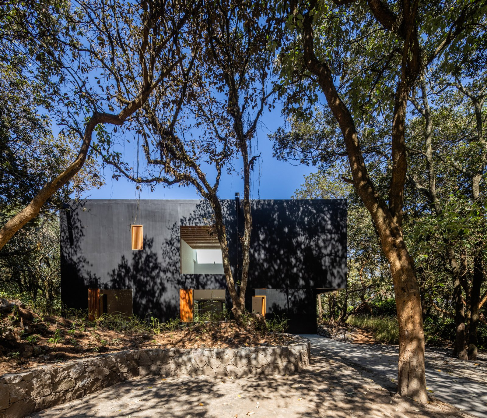 A Matte Black Home in Mexico City Opens Up to 360-Degree Forest Views