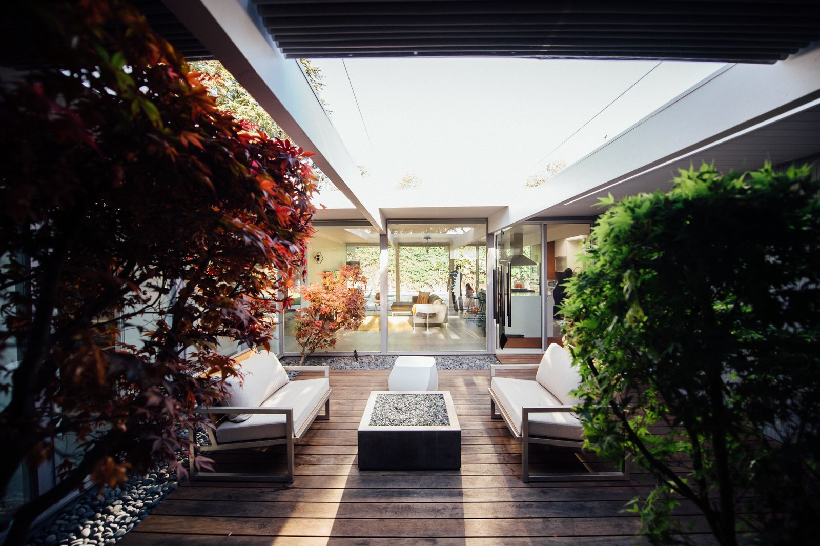 Outdoor, Trees, Small Patio, Porch, Deck, Wood Patio, Porch, Deck, and Hardscapes  Photo 7 of 11 in An Interior Designer Launches Her Career by Renovating Her Family's Midcentury Eichler