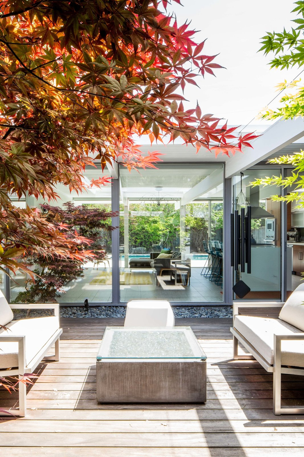 Outdoor, Small Patio, Porch, Deck, Hardscapes, Trees, and Wood Patio, Porch, Deck  Renovated Sunnyvale Eichler from An Interior Designer Launches Her Career by Renovating Her Family's Midcentury Eichler