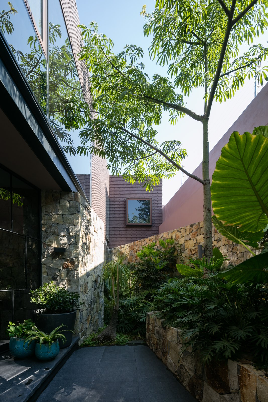 Outdoor, Side Yard, Trees, Garden, and Landscape Lighting  Casa OM1