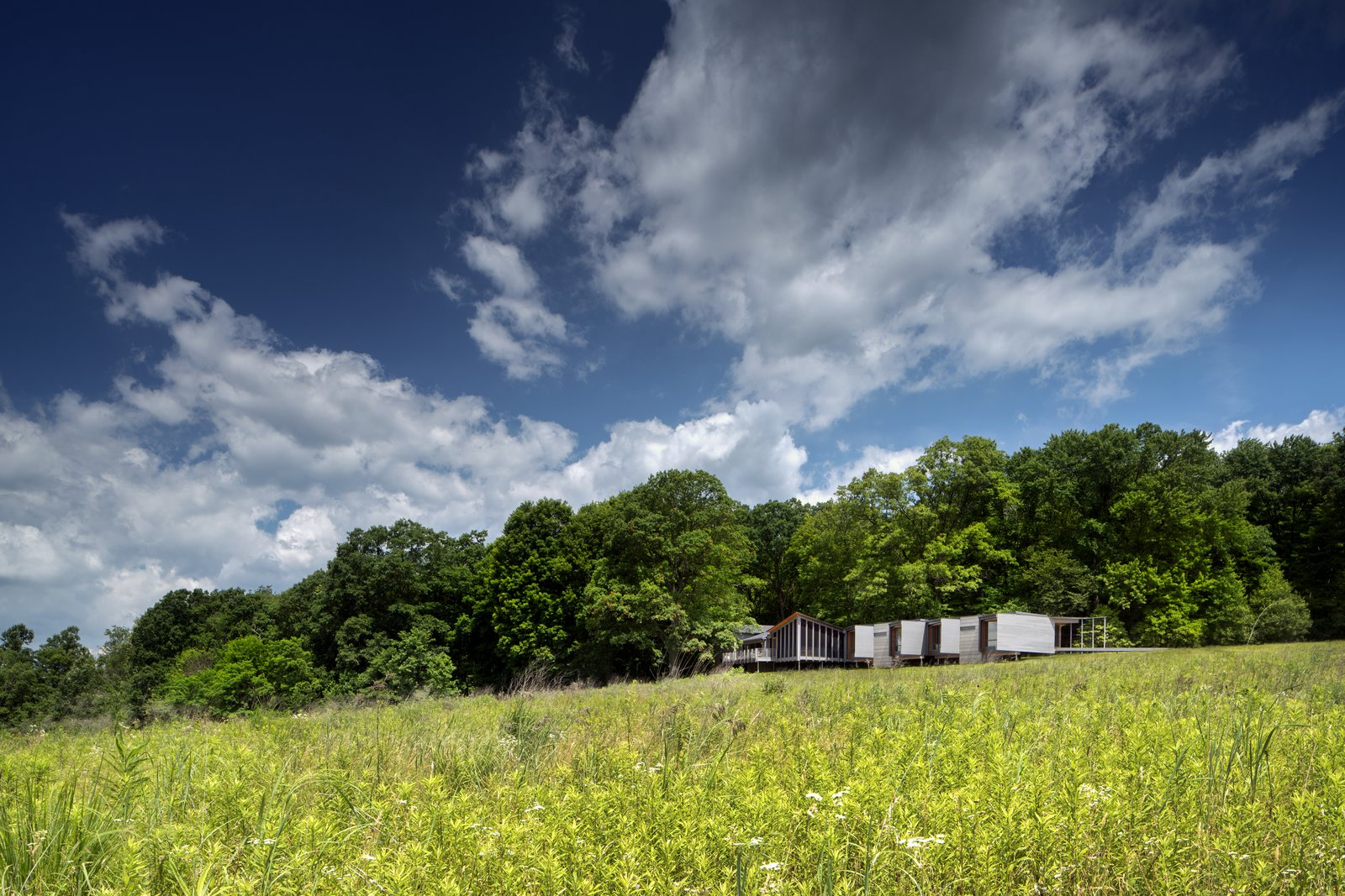 Outdoor, Grass, Trees, and Field  High Meadow at Fallingwater by Bohlin Cywinski Jackson