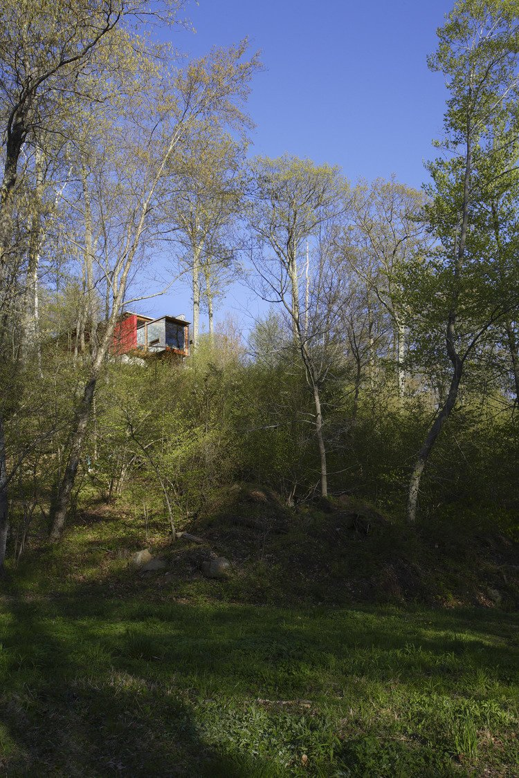 Outdoor, Woodland, Grass, and Side Yard  Edge House by Bohlin Cywinski Jackson