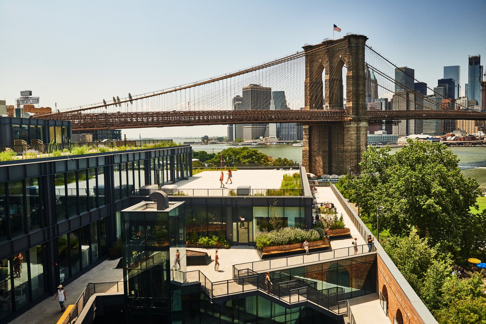 A Brooklyn-Based Landscape Firm That's Reshaping New York City's Green Urban Scene