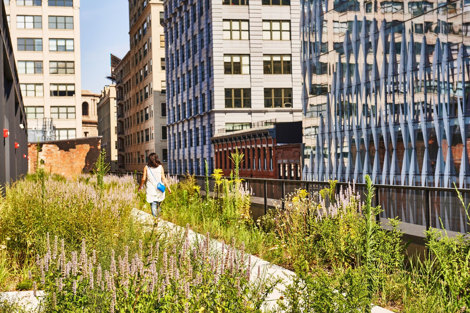Photo 2 of 14 in A Brooklyn-Based Landscape Firm That's Reshaping New York City's Green Urban Scene
