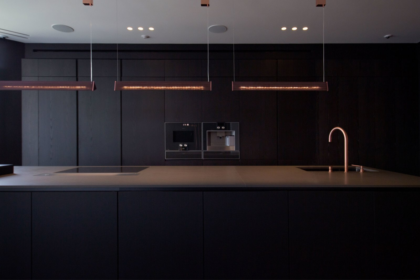 Kitchen, Pendant Lighting, Ice Maker, Drop In Sink, and Wood Cabinet  Photo 5 of 13 in A Family's Kiev Apartment Is Filled With Copper, Marble, and a Sophisticated Palette