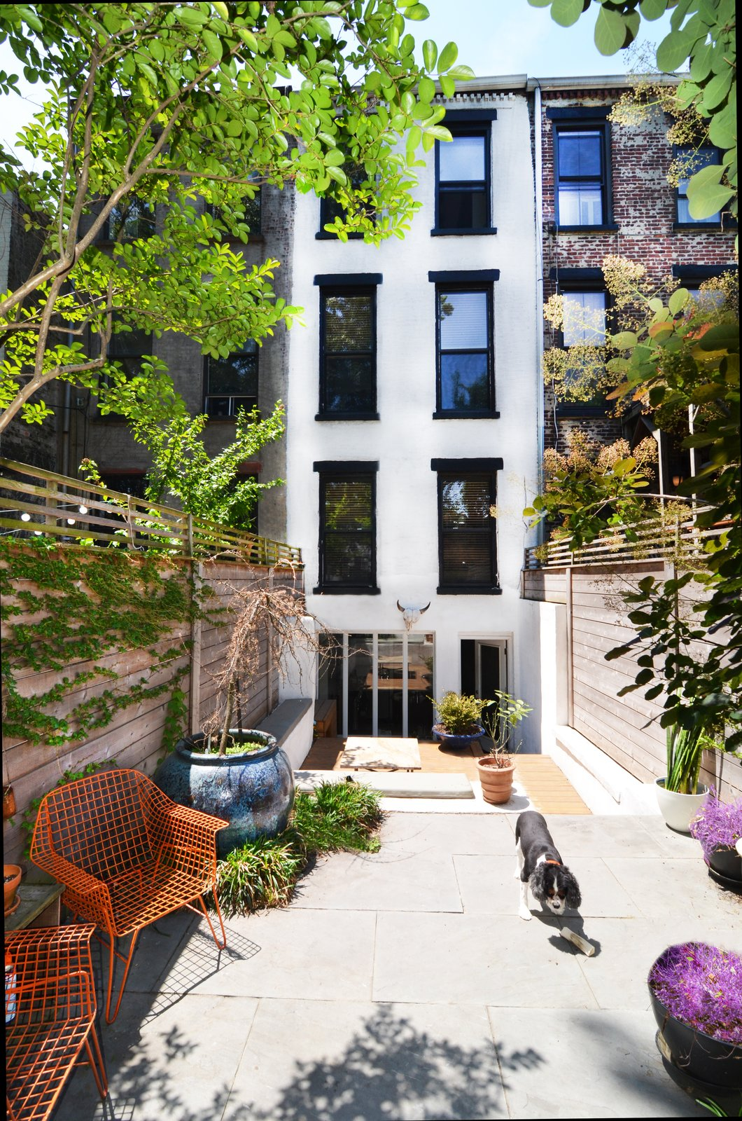 Outdoor, Wood Patio, Porch, Deck, Trees, Pavers Patio, Porch, Deck, Back Yard, and Raised Planters  Photo 2 of 16 in A Design Duo's 19th-Century Brooklyn Townhouse Is Filled With Art They Love