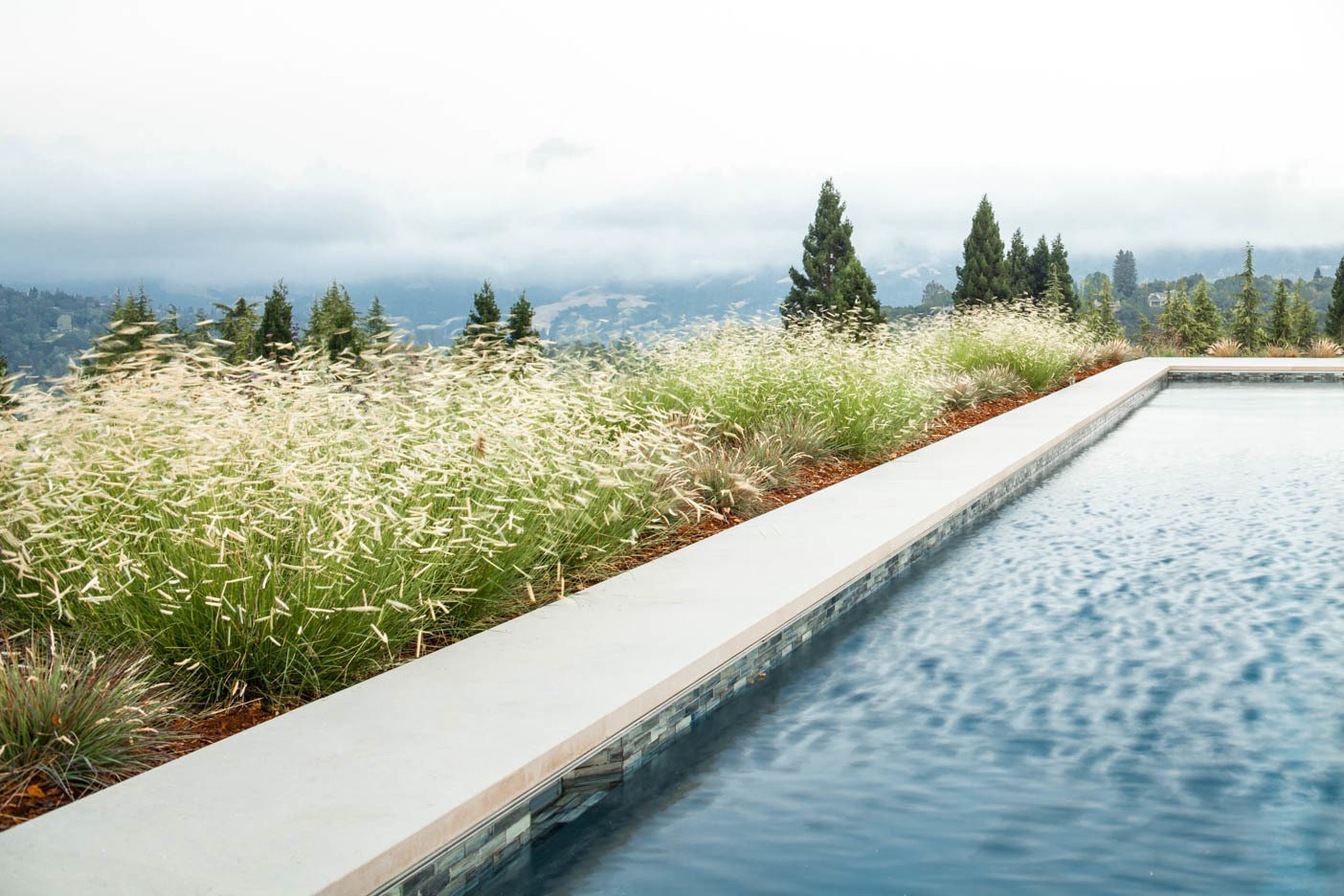 Outdoor, Back Yard, Hardscapes, Grass, and Large Pools, Tubs, Shower  A pool with a view by Agnieszka Jakubowicz