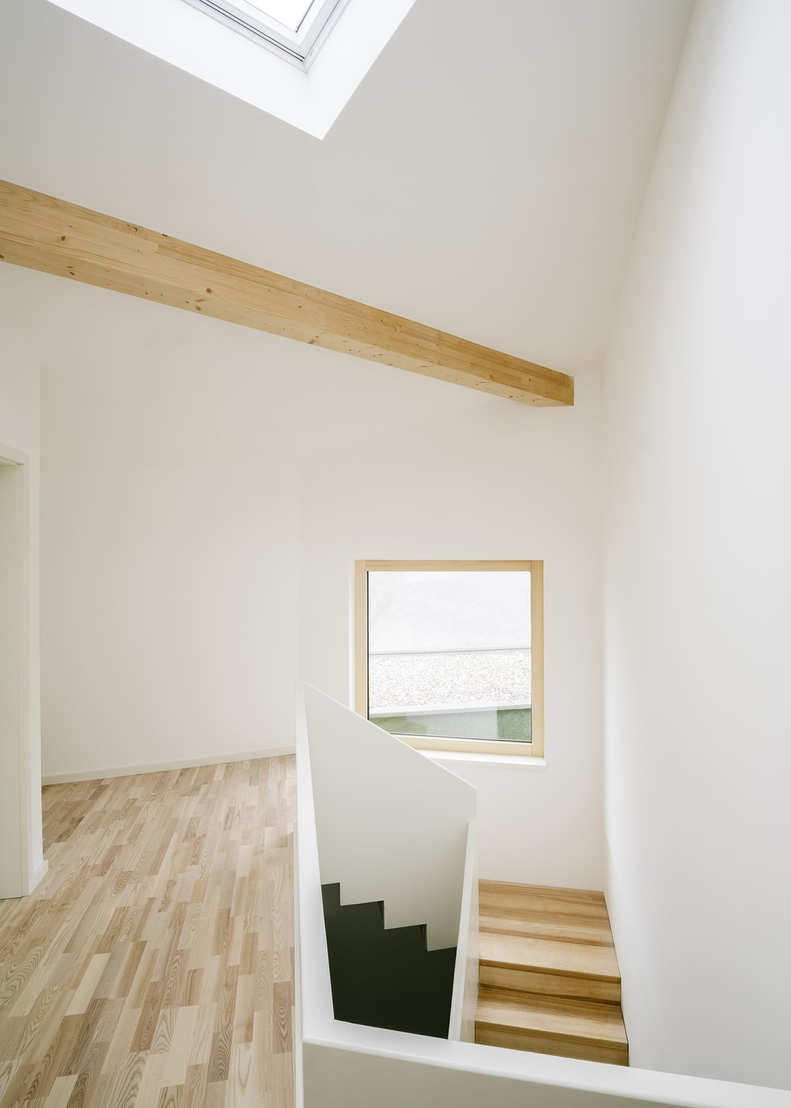 Staircase and Wood Tread  Haus P by Project Architecture Company