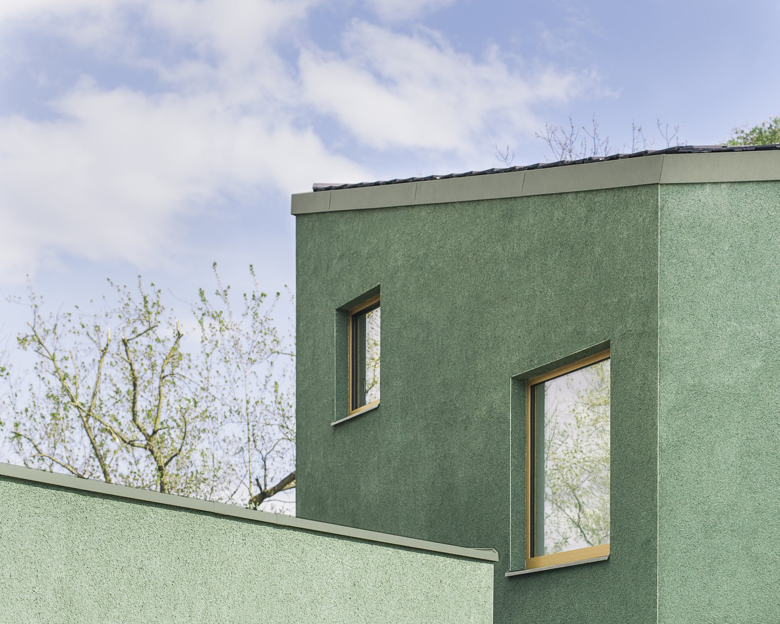 Windows, Picture Window Type, Metal, and Wood  Haus P by Project Architecture Company
