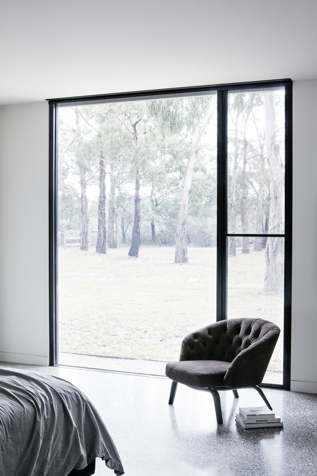 Windows, Picture Window Type, and Metal  Photo 8 of 9 in Recycled Wood Stars in an Ogle-Worthy Renovation in Australia