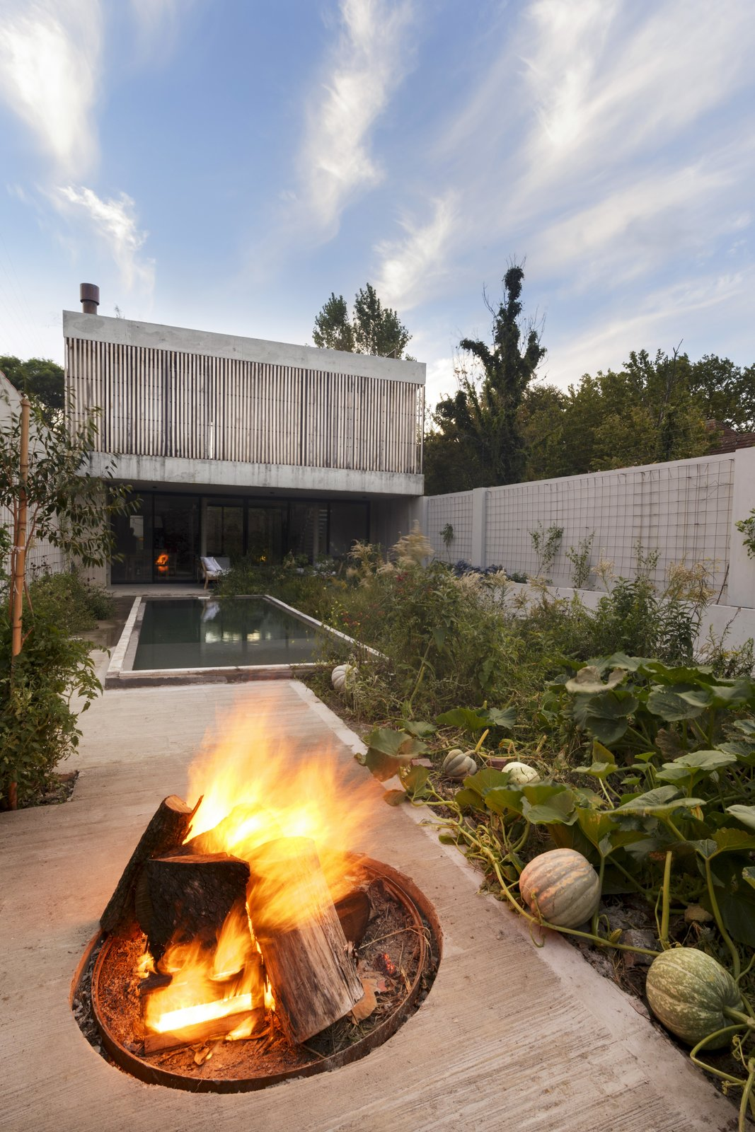 Outdoor, Gardens, Concrete, Walkways, Back Yard, Plunge, Shrubs, and Vegetables  Outdoor Concrete Plunge Back Yard Photos from A Gardener's Home in Argentina Boasts Flowing Green Spaces