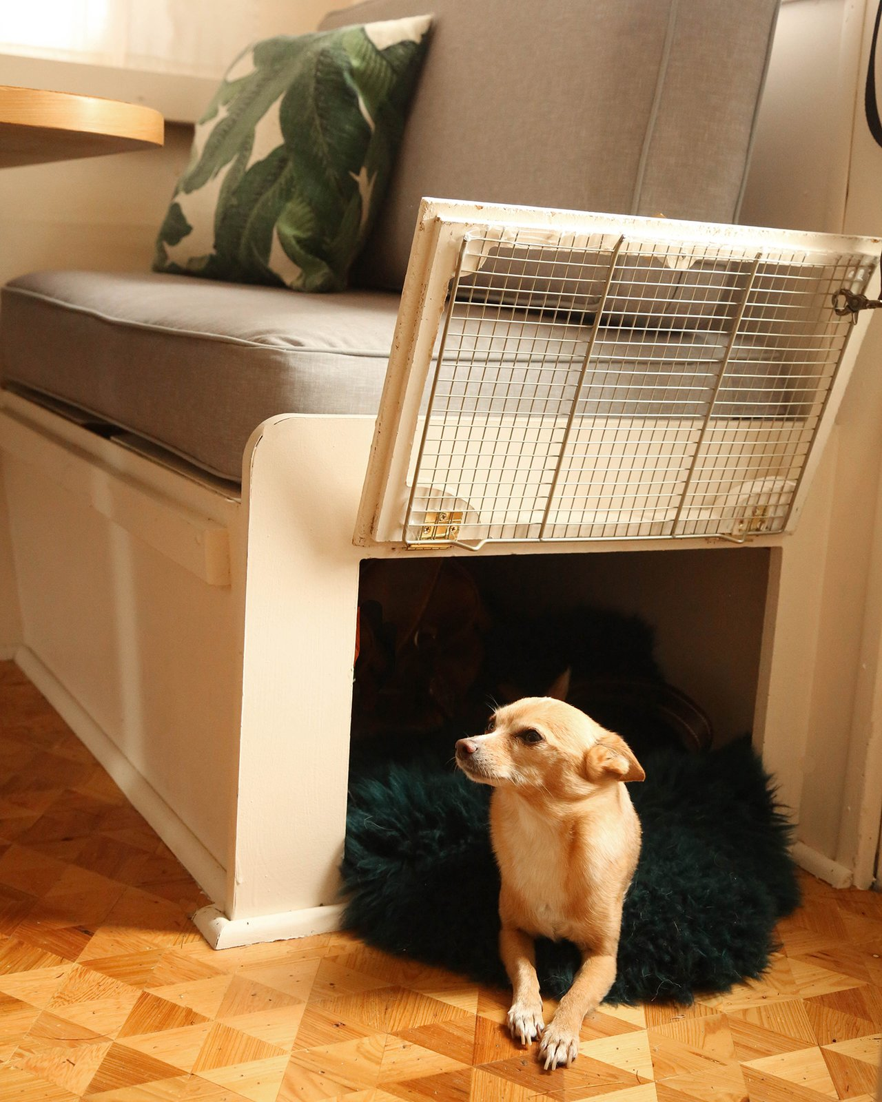 The seat base storage was converted to a fun kennel for the couple's dog, Fox.