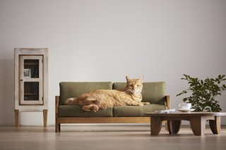 "The ""Feline Sofa"" from Hiromatsu Furniture can be purchased directly from the company and seen on display at the tourism center in Okawa."