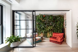 The new lounge space connects to the living room via a sliding steel-and-glass door, and hosts the homeowner's gardening hobby via the striking green wall.