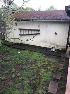 A view of the detached garage and neglected yard before.