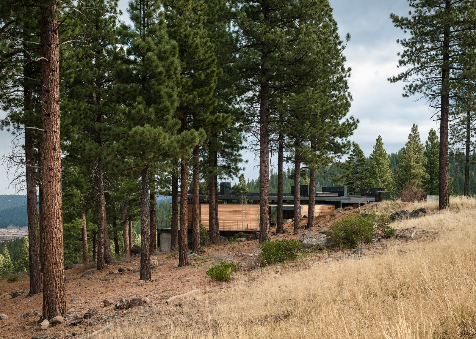 Outdoor, Side Yard, Trees, Grass, Shrubs, and Boulders  Martis Camp Residence 2 by John Maniscalco Architecture