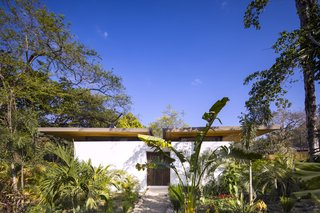 The villas sit harmoniously within the tropical landscape, shaded by trees and vegetation.