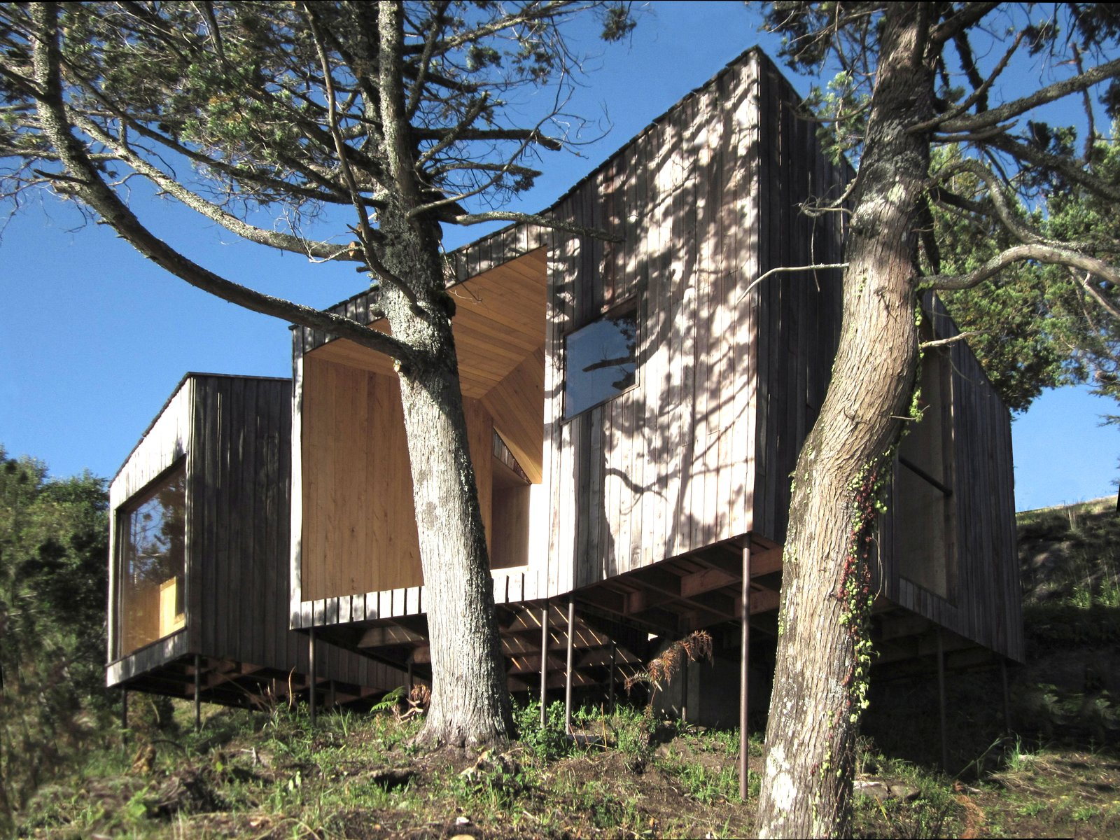 Exterior, House Building Type, and Wood Siding Material  Photo 1 of 9 in A Timber-Clad Sauna in Chile Angles For Lakeside Views