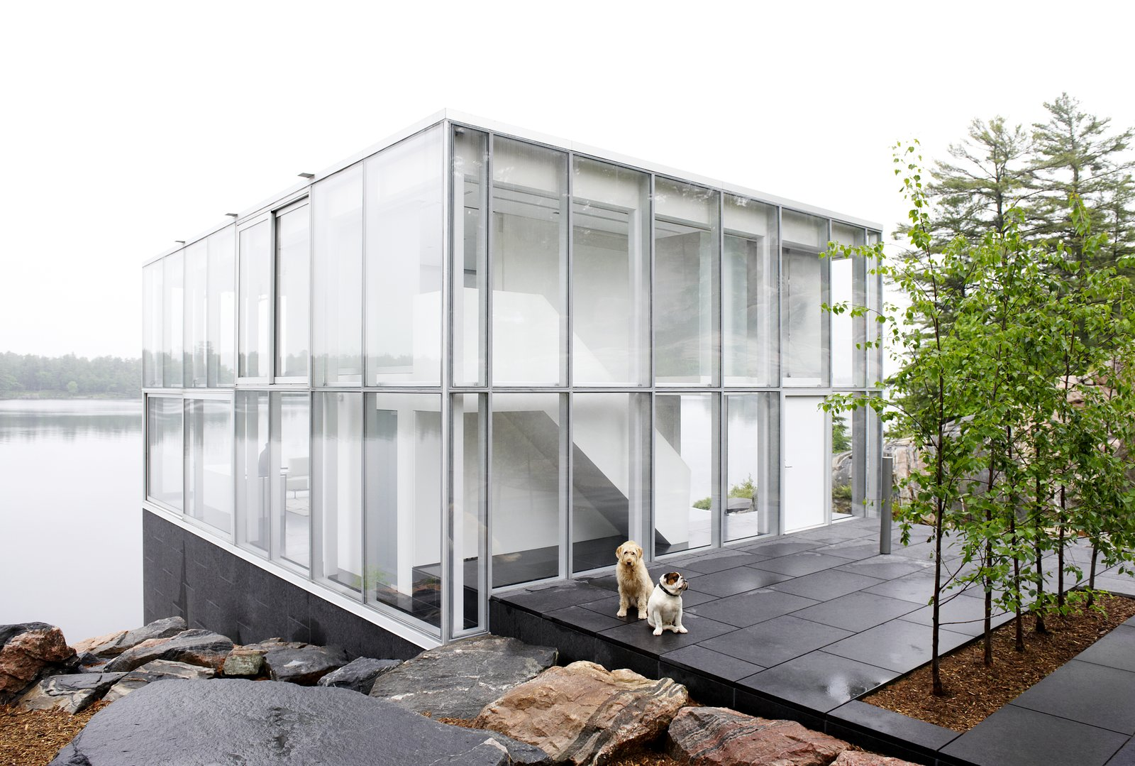Photo 2 of 14 in This Mesmerizing Glass House Is Also a ...