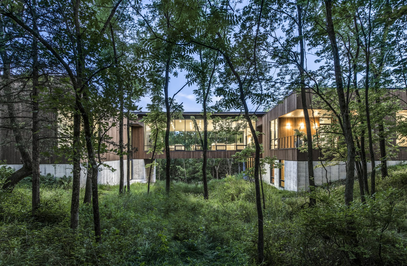Exterior and House Building Type  Photo 1 of 10 in An Incredible Forest Home Leaps Over a Ravine