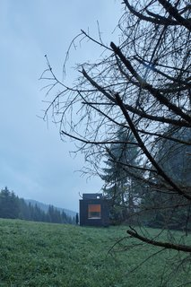 The wood-clad box blends in with the surrounding forest.