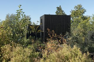 The simple, timber-clad masses of Tiny Holiday Home delicately settle into the surrounding foliage.