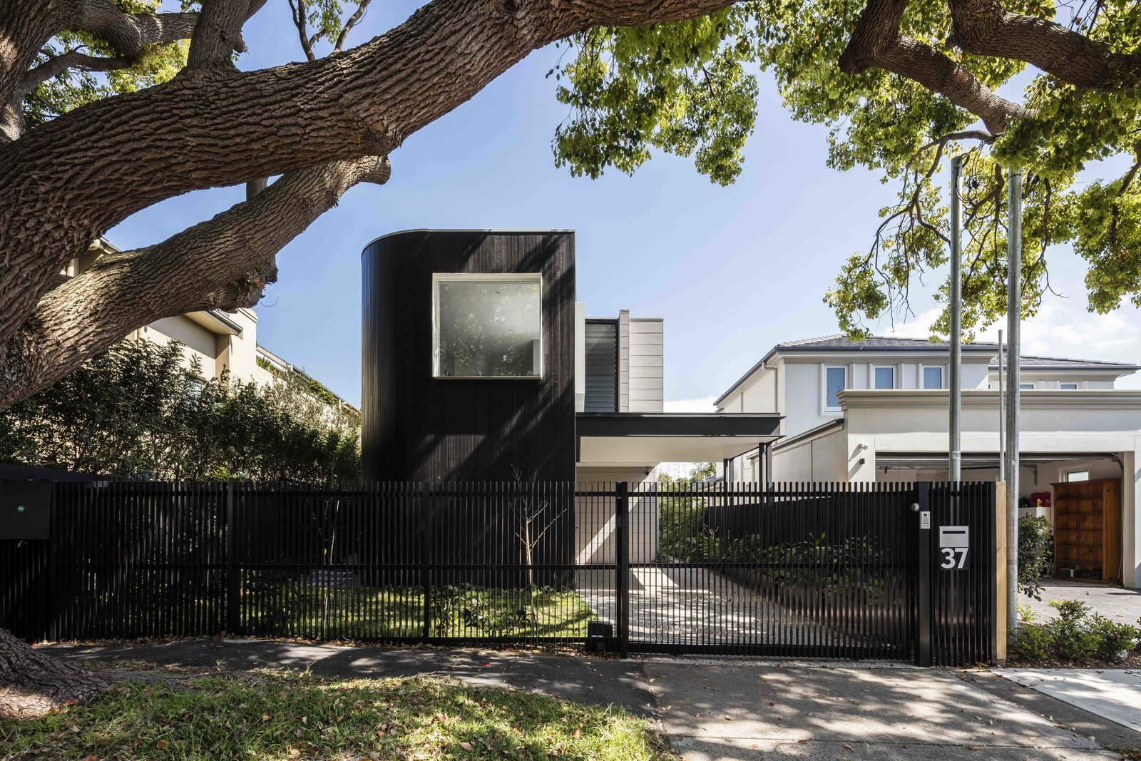 Outdoor, Front Yard, Trees, Grass, Vertical Fences, Wall, and Metal Fences, Wall  Photos from The Rose Bay House