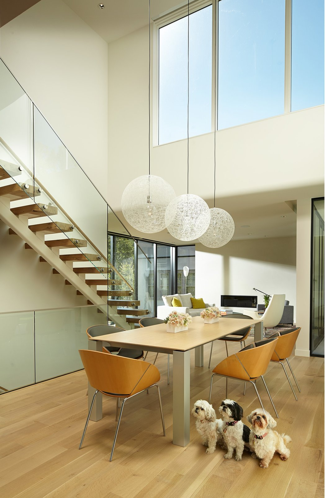 Wood Tread, Glass Railing, Dining Room, Chair, Table, Light Hardwood Floor, Accent Lighting, and Pendant Lighting  Sheridan Residence by Peterssen/Keller Architecture