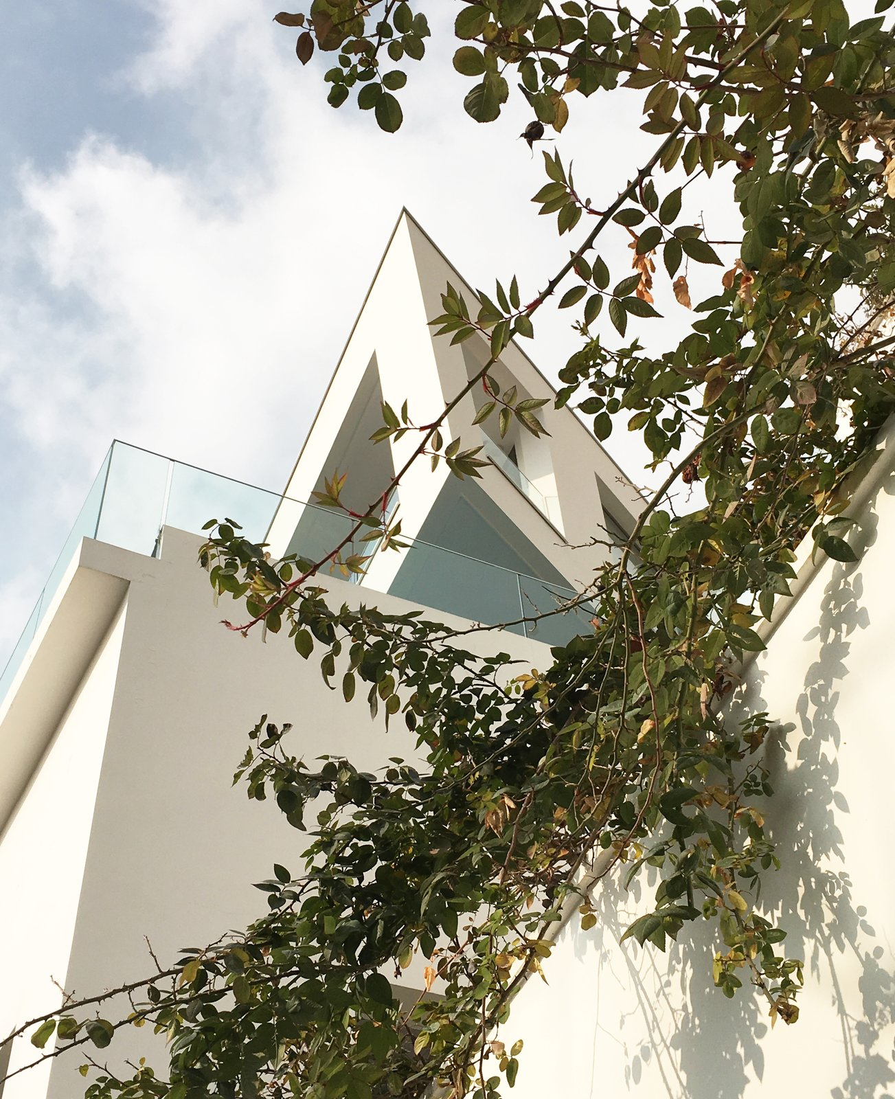 Lavasan Villa by Hariri & Hariri Architecture