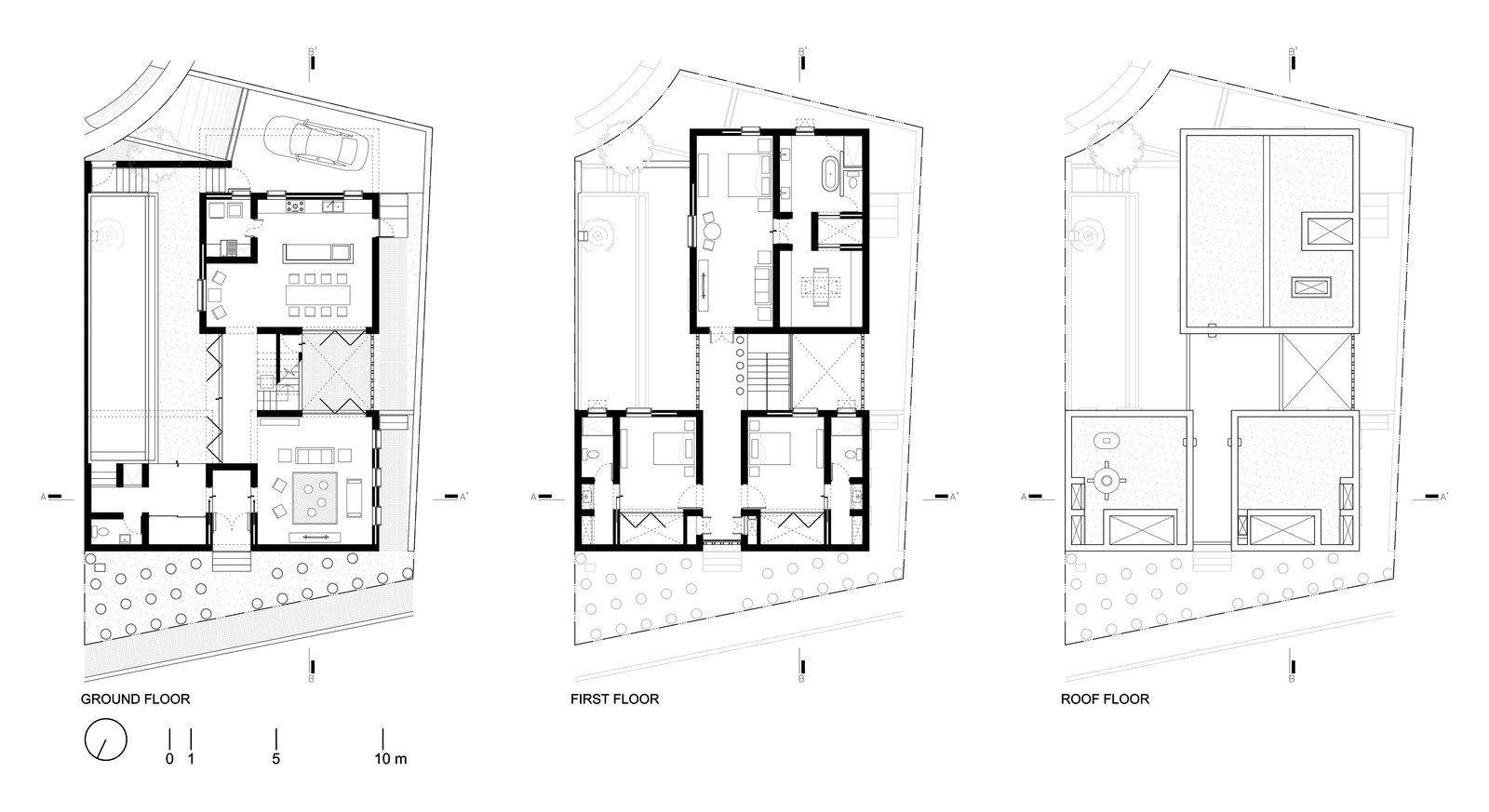 Shed & Studio Plans  Casa Iguana by OBRA BLANCA