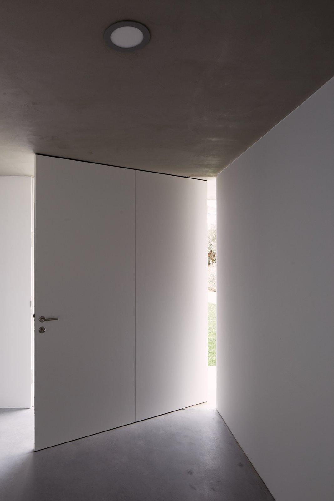 Doors, Swing Door Type, and Exterior  Fanu House